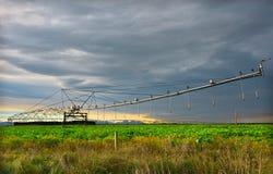 Automatiserat bevattningsystem i modernt jordbruk royaltyfri fotografi