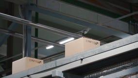 Automatisering - Kartondozen op transportband in fabriek klem Dozen die zich op de transportband bij de fabriek bewegen royalty-vrije stock afbeeldingen