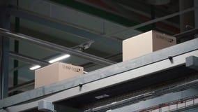 Automatisering - Kartondozen op transportband in fabriek klem Dozen die zich op de transportband bij de fabriek bewegen stock footage