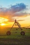 Automatisiert, Bewässerungssystem im Sonnenuntergang bewirtschaftend lizenzfreie stockfotografie