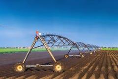 Automatisiert, das Bewässerungs-Berieselungsanlagen-System bewirtschaftend in Kraft lizenzfreie stockfotografie