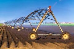 Automatisiert, das Bewässerungs-Berieselungsanlagen-System bewirtschaftend in Kraft lizenzfreie stockfotos