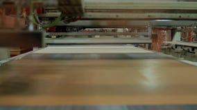 Automatisk pläterad träflismaterialproduktion lager videofilmer