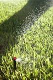 Automatiska gräsmattagräs- och trädgårdspridare Fotografering för Bildbyråer