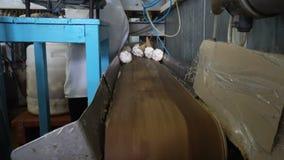 Automatiska linjer för tillverkning av glass för transportör lager videofilmer