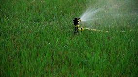 Automatiskt bevattna för gräsmatta stock video