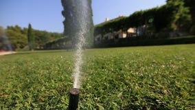 Automatiskt bevattna för gräsmatta Sprejare av gräs Grön gräsmatta på villa M lager videofilmer