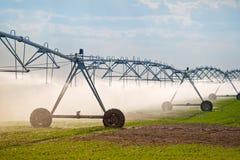 Automatizzato coltivando il sistema di spruzzatori di irrigazione in funzione Fotografia Stock