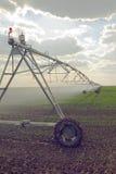 Automatizzato coltivando il sistema di spruzzatori di irrigazione in funzione Immagine Stock Libera da Diritti