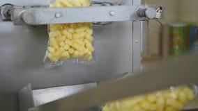 Automatyczna maszyna dla pakować w fabryce zbiory
