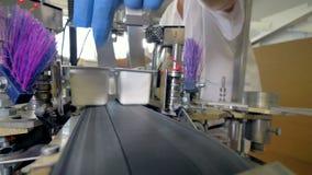 Automatyzujący nowożytny produkcja żywności konwejer 4K zbiory wideo