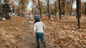 : Automn公园儿童奔跑到鸽子里群  他们飞行  股票视频