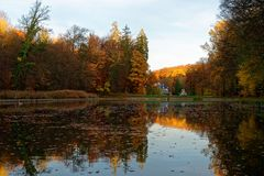 Free Automn Colors In The Sonian Forest Stock Photography - 139355712