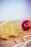 Automn details: branches, fallen leaf and apples Stock Images