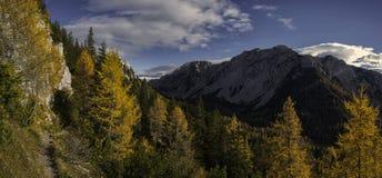 Automn em cumes eslovenos Imagens de Stock
