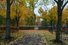 Automn Royalty Free Stock Images