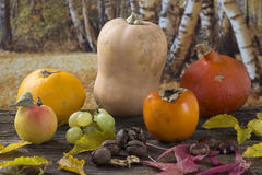 Automn vegetables Stock Photography