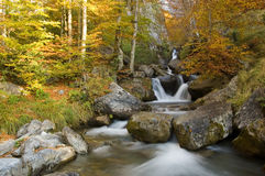 Automnal colors in the french pyrenees Royalty Free Stock Images