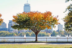 Automne à Boston images stock