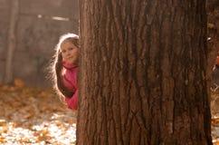Automne à l'extérieur Photo libre de droits
