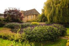 Automne à Oxford photographie stock libre de droits