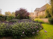 Automne à Oxford, Oxfordshire, Angleterre photographie stock libre de droits