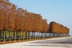 Automne à Parigi fotografia stock libera da diritti