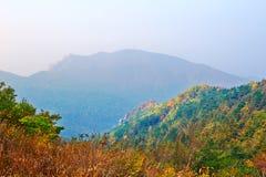 Automne éloigné de montagnes Images libres de droits