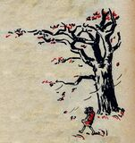 automne-2 Stock Image
