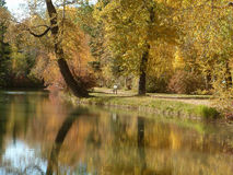 Automne photos stock