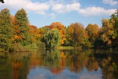 automne photographie stock libre de droits