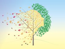 Automne illustration stock
