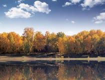 automne Photos libres de droits