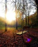 automne Photo stock