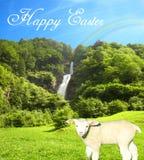 Automne admirablement ensoleillé de l'eau un jour lumineux d'été avec un agneau doux et un beau collage de ciel bleu avec le text illustration stock