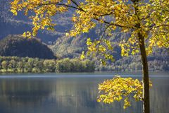 Automne au lac Kochelsee, Allemagne Photographie stock