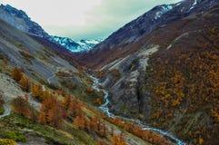 Automne/automne dans Parque Nacional Torres del Paine, Chili photos stock