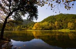 automne beau Images libres de droits