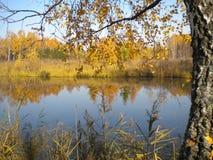 Automne, belle réflexion dans l'eau, paix et tranquille photos stock