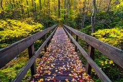 Automne, Boone Fork Bridge, Ridge Parkway bleu Image libre de droits