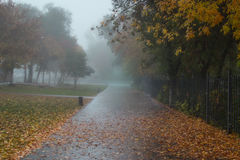 Automne brumeux photos libres de droits