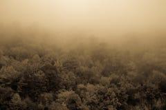 Automne brumeux et nuageux haut dans les montagnes Photo stock