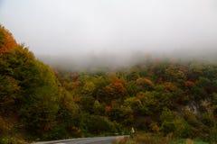 Automne brumeux et nuageux haut dans les montagnes Photos libres de droits