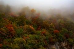 Automne brumeux et nuageux haut dans les montagnes Photographie stock libre de droits
