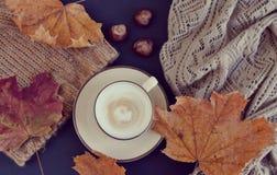 Automne chaud de cappuccino de café de tasse de thé Image libre de droits