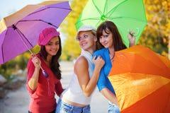 Automne coloré Images stock