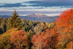 Automne coloré en beau parc national tchèque Sumava - Europe image libre de droits