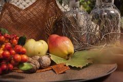 Automne d'†d'arrangement de pique-nique de jardin « Image libre de droits
