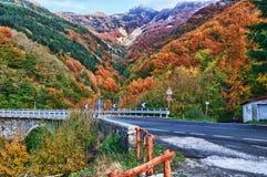Automne d'Apennines Image stock