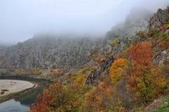Automne d'or de paysage de montagne Photos stock
